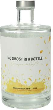 No Ghost in a Bottle - Ginger Delight